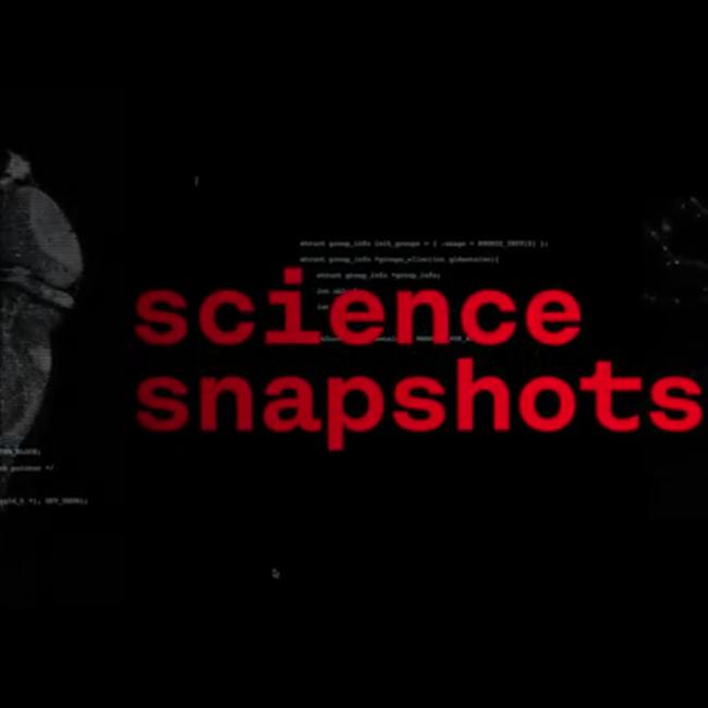 Science snapshot: quem corre mais depressa aprende melhor
