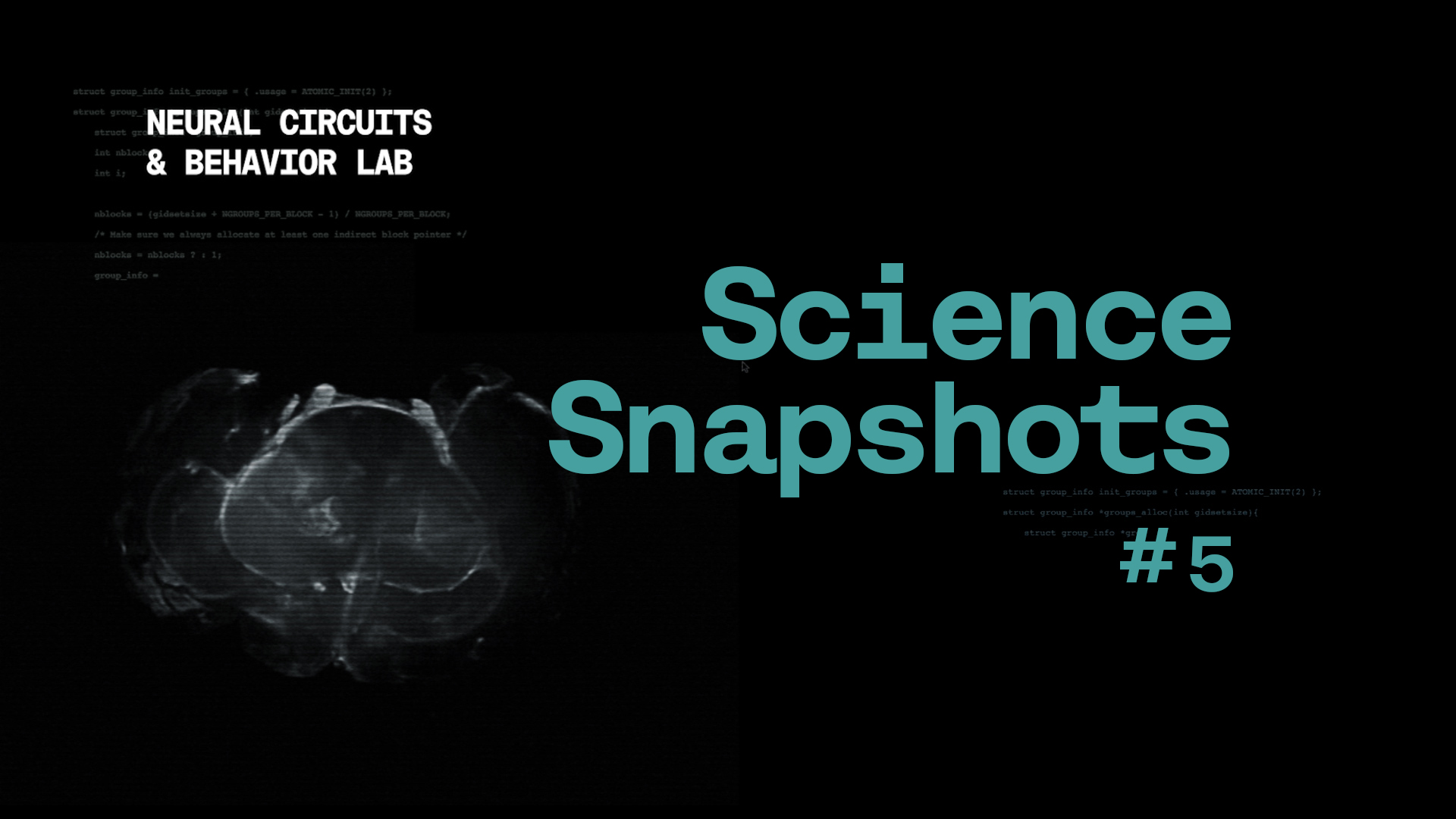 Science Snapshot: Untangling Space and Time in the Brain